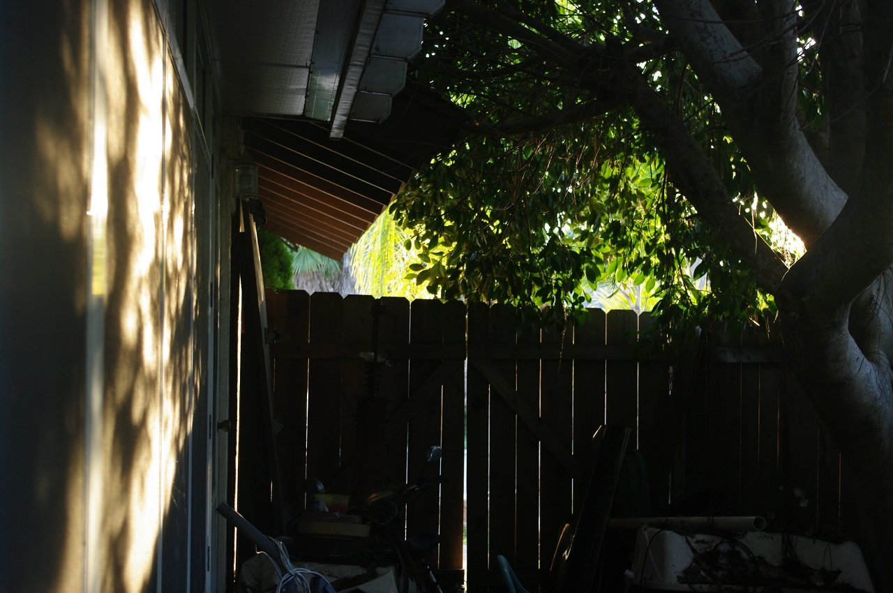 Eaves and Fence, Clairemont, San Diego