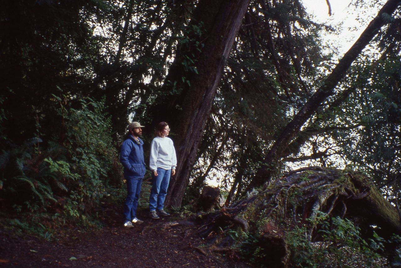 Rainforest, Pacific Northwest, 1990s